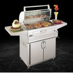 Fire Magic Charcoal Oven Grill with Hood 24'' - 22-S101C-61
